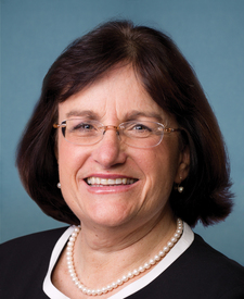 Rep. Ann Kuster Photo